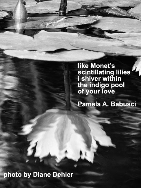 [Monet's lilies], taiga by Pamela A. Babusci and Diane Dehler