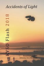 Front Cover of Accidents of Light: KYSO Flash Anthology 2018