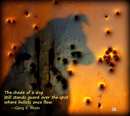 The Shade of a Dog, haiga (art plus poetry) by J.R. Lancaster and Gary S. Rosin