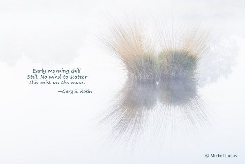 Mist on the Moor, haiga (art plus poetry) by Michael Lucas and Gary S. Rosin