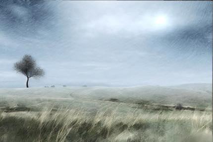 Digital art: [Prairie tree], by An Mayou