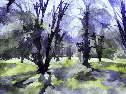 Digital art: [Twilight grove], by An Mayou