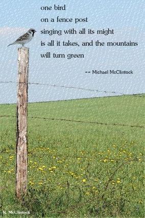 [one bird] tanka by Michael McClintock and art by Karen McClintock
