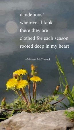 [dandelions!] tanka by Michael McClintock and art by Karen McClintock