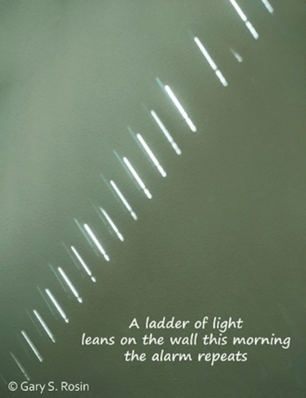 A ladder of light: haiga (poem and photograph) by Gary S. Rosin