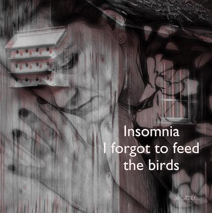 Digital Art: Insomnia, haiga by Alexis Rotella