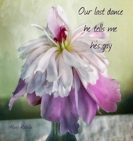Digital Art: Our last dance, haiga by Alexis Rotella