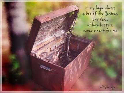 (in my hope chest): haiga by Debbie Strange