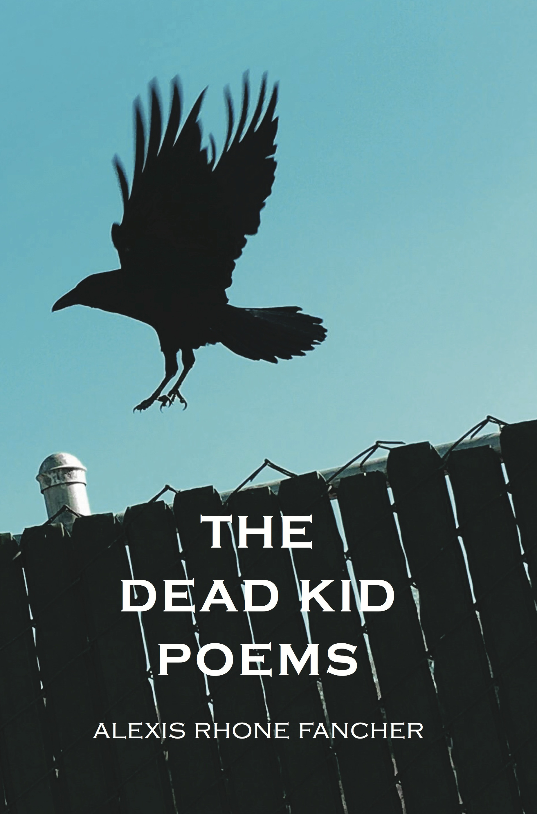Front Cover of The Dead Kid Poems, by Alexis Rhone Fancher